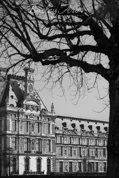 The Louvre in Paris Black and White Photograph - Tree and Louvre Museum Paris Photography $25.00