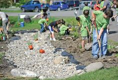 school rain garden - Google Search