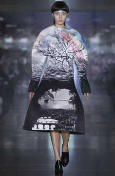 MARY KATRANTZOU Fall 2013 RTW