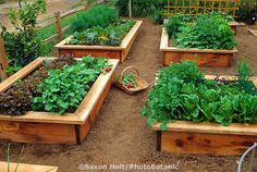 Raised bed vegetable garden. - I like that there is a little seat on the edge.