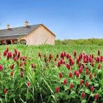 Bringing the Farm to Your Backyard - www.utahlandowners.com