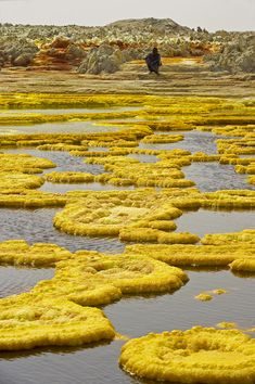 ETHIOPIA - Danakil depression - Dallol on Photography Served. Salt and sulfur structures on Mount Dallol geothermal field