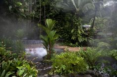 Tabacon Grand Spa thermal resort, Costa Rica
