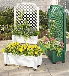 Rolling Planter/Trellis by Problem Solvers. $129.95. Rolling Planter/Trellis. What could be better than a planter and trellis in one? Make it mobile and self-watering, too, and you've got a really handy rolling Planter with Trellis. Covered with flowers or vines, it makes a convenient privacy screen. A built-in 2-gallon reservoir and water level indicator ensure that your plants will always have the water they need, even when youre on vacation. To move, just unlock ...