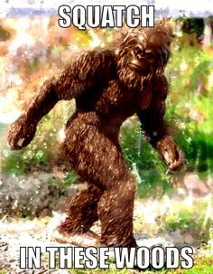 Squatch and Learn About Baby Bigfoots - YouTube