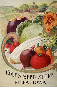 Missouri Seed Company -Catalogue of seeds for farm and garden - 1906 Garden Catalogs, Plant Catalogs, Seed Catalogs, Vintage Diy, Vintage Labels, Vintage Cards, Vintage Gardening, Organic Gardening, Vegetable Gardening