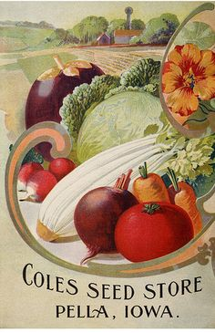 Vegetable mix, and nasturtiums. Cole's Garden Annual back cover (1905)