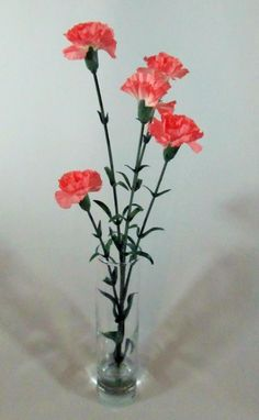 January Birth Month Flower - Mini Carnation Floral Arrangement