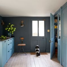 Blue kitchen painted in Paint