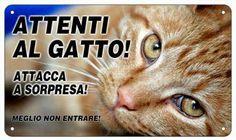 Cartello Attenti al gatto