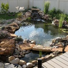 Natural Pond Bridge Design Ideas For Small Backyard Fish Ponds Backyard, Outdoor Ponds, Backyard Water Feature, Garden Ponds, Koi Ponds, Front Yard Landscaping Pictures, Small Backyard Landscaping, Landscaping Ideas, Backyard Ideas