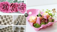 riciclo-creativo-scatole-delle-uova