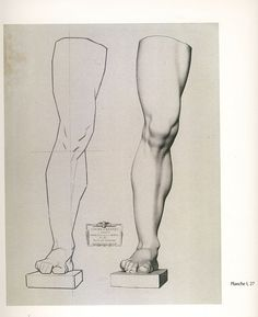 27_leg_of_germanicus_front_view | Flickr - Photo Sharing! Leg Reference, Anatomy Reference, Drawing Reference, Anatomy Study, Anatomy Drawing, Human Anatomy, Drawing Lessons, Drawing Techniques, Drawing Tips