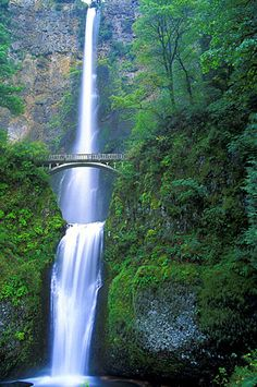 Multnomah Falls is a waterfall on the Columbia River in Oregon, the state in which more impressive waterfalls are situated. The fall drops into the pool in two steps, from 165 meters and then from 21 meters. It is the tallest waterfall in Oregon, Oh The Places You'll Go, Places To Travel, Places To Visit, Travel Stuff, Travel Destinations, Multnomah Falls, Beautiful Waterfalls, Road Trip Usa, Nature Pictures