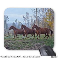 Three Horses Moving As One Horse-lover Photo Gift Mouse Pad