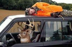 #Deer #hunting.