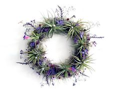 air plant wreath // plum  //  tillandsia by by peacocktaco on Etsy