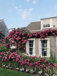 beach cottages exterior paint colors - Home & DIY Nantucket Style Homes, Nantucket Cottage, Nantucket Island, Beach Cottage Style, Beach Cottage Decor, Cozy Cottage, Beach House, Coastal Style, Nantucket Beach