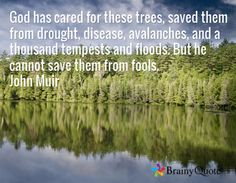 God has cared for these trees, saved them from drought, disease, avalanches, and a thousand tempests and floods. But he cannot save them from fools. John Muir