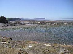 Watchet - Watchet Bay - Low Tide © Geoff Taylor
