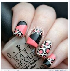 colorblock and leopard