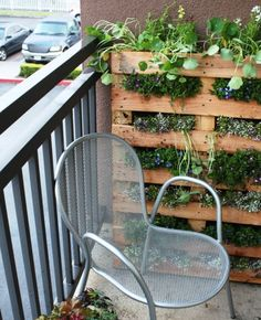 Cool DIY projects for wall greening from pallets