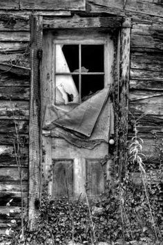 Abandoned things have an unusual beauty.  Who lived here?  Where did they go?  Why was this place abandoned?  Such an interesting story maybe just waiting to be told.