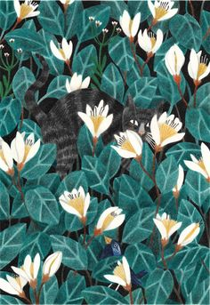 Since today you can find a new print in my webshop! It's called 'Wildernis' and a tribute to my cat Lino who went on a big adventure. The size of the print is 21 x cm and printed on 300 grams, non ironed, off white Munken Paper from Arctic Paper. Art And Illustration, Pattern Illustration, Illustrations And Posters, Cat Wallpaper, Pattern Wallpaper, Motif Floral, Beautiful Drawings, Cat Art, Watercolor Art