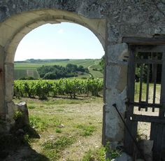 chablis producers - Bing Images