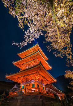 Cherry Blossom Night Lighting at Kiyomizudera Temple - Travel Caffeine