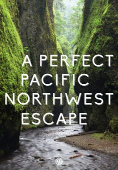Escape to the lush Pacific Northwest, with a a hike through a prehistoric gorge...been thete....done that...it was wonderful.