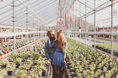 Loving this photographer ... Another great Boise engagement session. This time, at the Edwards Greenhouse.