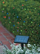 Color-Morphing Solar String Lights - LED outdoor decorative lighting | Solutions
