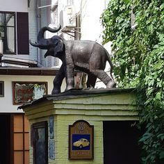 Lion Sculpture, Elephant, Statue, Instagram, Art, Craft Art, Elephants, Kunst, Gcse Art