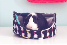Guinea Pig Cuddle Cup with Absorbent Pad / Guinea Pig Bed / Fleece / Sunglasses Motif / LA Nights / Cozy / Size Large