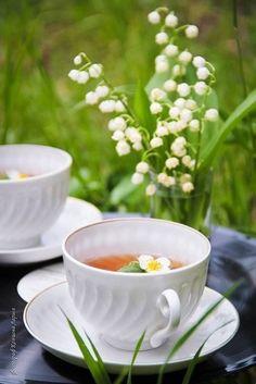 Coffee Vs Tea, Coffee Cafe, Coffee Drinks, Good Morning Coffee, Coffee Break, Sunday Morning, Happy Sunday, Teacup Flowers, Coin Café