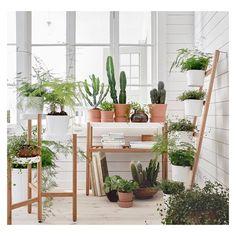 • um // os verdinhos // •• • • percebam os mobiliários e suportes • via @ikeanorge • #apto41inspira #home #homedecor #inspiration #interior #inspiracao #interiorstyle #interiordesign #greenthings #apto41greenthings #green