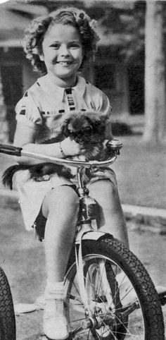 Shirley Temple riding a tricycle with her dog, Ching Ching, Shirly Temple, Pekingese Dogs, She Movie, Child Actors, Old Hollywood, Old Photos, Movie Stars, Famous People, Cute Pictures