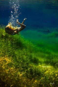 Swimming in sea grass