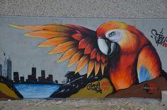 Parrot graffiti