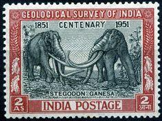 """Indian Stamp 1951 - """"Stegodon Ganesa"""""""