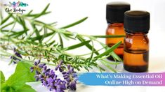 The best in quality #essentialoil online in Australia comes with the assurance being free of any side effects. Such essential oil online in Australia is also popular as a perfect ingredient for aromatic therapies.
