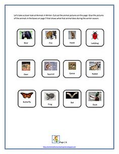 Animals in Winter activity freebie