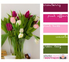 ~inspiration- colour palette~ Cranberry, fushia, pale pink, grass green and evergreen Colour Pallette, Colour Schemes, Color Combinations, Cranberry Color, Design Seeds, Color Swatches, Pink And Green, Pale Pink, Purple