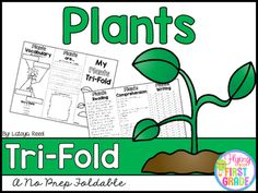 Plants SAVE BIG! And BUY THE BUNDLE! BUNDLE WITH OVER 90 THEMESAPRIL TRIFOLDSFROGS TRI-FOLDGLOBES TRI-FOLDMAPS TRI-FOLDRAIN TRI-FOLDCOMMUNITY HELPERS TRI-FOLDEARTH DAY TRI-FOLDRAINFOREST TRI-FOLDPLANTS TRI-FOLDTri-Folds Can Be Used For Literacy Centers Social Studies Mini Lesson Small Groups Homework Partner Work Research Individual Work Group Work Tri-Fold Skills Included Vocabulary Writing Reading Passage Comprehension Fluency Art