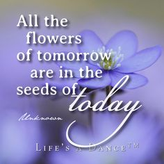flowers of tomorrow. Words Worth, Feel Good, Laughter, Poems, Spirituality, Wisdom, Dance, Feelings, Sayings