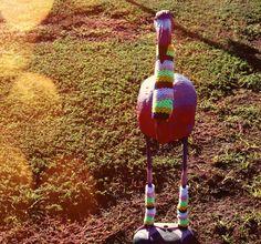 Posts about adelaide written by yarnbomb Yarn Bombing, Pink Flamingos, Flamingos