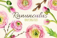 Watercolor ranunculus flowers set by Yuliya Shora on Creative Market