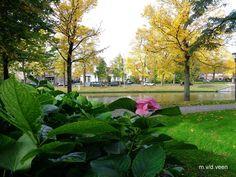 zomer/herfst