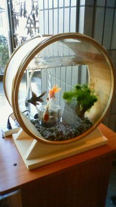30 amazing aquarium design ideas for home decorations Anyone could create a spectacular habitat for the aquarium in their home. Aquarium aquariums are readily available in many different shape. Indoor Pond, Outdoor Ponds, Indoor Water Garden, Mini Aquarium, Home Aquarium, Aquarium Fish Tank, Aquariums Super, Amazing Aquariums, Tanked Aquariums